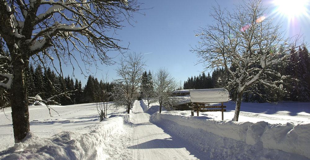 Wintertraum_DSC_3858.jpg